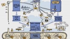 Schéma DME quantitative easing